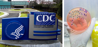 Business Pulse: How CDC Protects the Health of Your Business